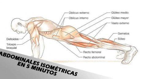 abdominales isometricas